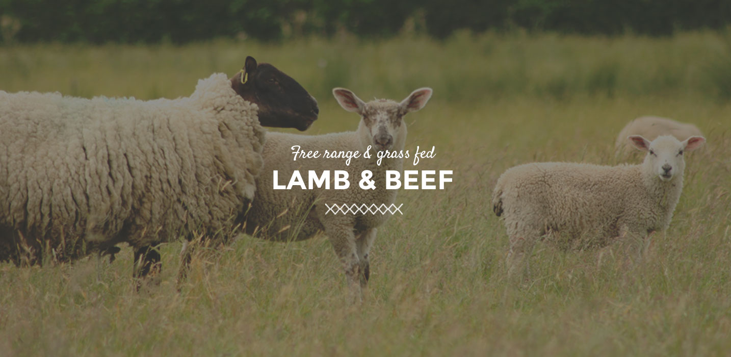 Lamb & Beef - The Butchery