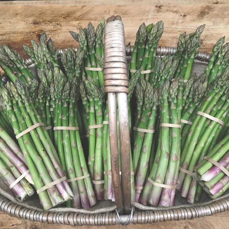 Bunch of Warwickshire Asparagus